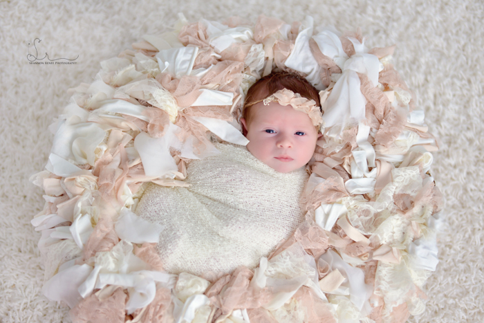 Tampa-Newborn-Photographer-5